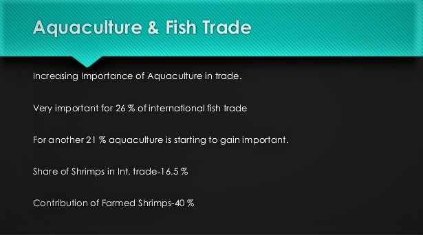 Why Aquaculture Is Important