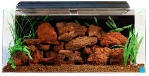 Seaclear-40-Gallon-Acrylic-Aquarium