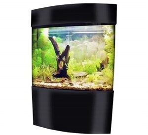 Vepotek 40-Gallon Acrylic Bowfront Aquarium