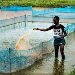 How to Start a Fish Hatchery Business